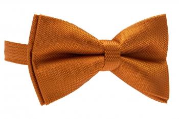 Papion oranj uni