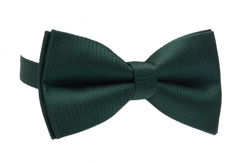 Papion verde uni